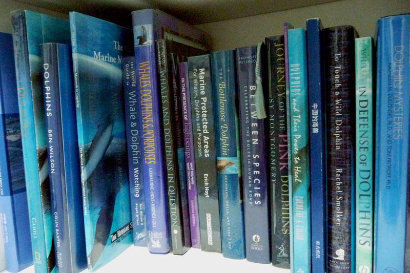 dolphin_books_img